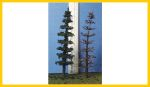 C-300 Conifer Armatures 3.0 Inches Tall